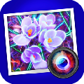 JixiPix Spektrel Art免费破解版