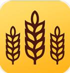 金麦浏览器